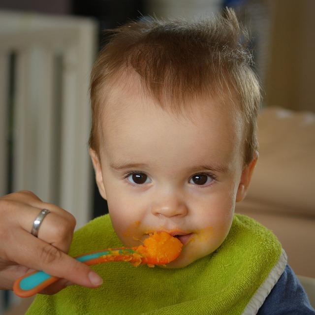 ekologisk barnmat